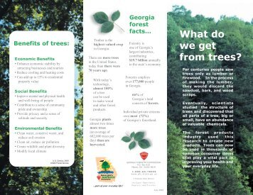 What Do We Get from Trees?