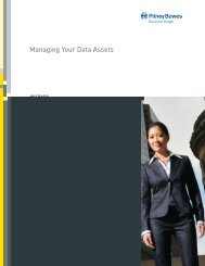 Managing Your Data Assets - Pitney Bowes Business Insight