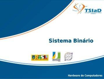Sistema Bi Sistema Binário