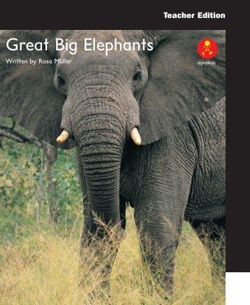 Great Big Elephants