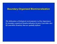 Lecture-7 (boundary-organized biomineralization)