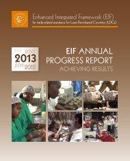 eif_annual_progress_report_2013