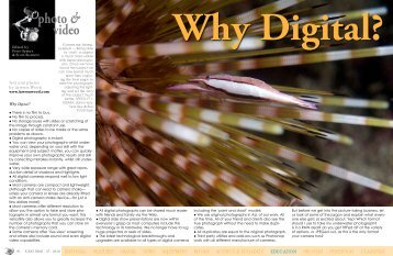 Why Digital? - X-Ray Magazine