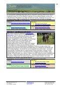 4 dagar Tanzania safari med Ngorongoro - Dahl Safaris - Page 4