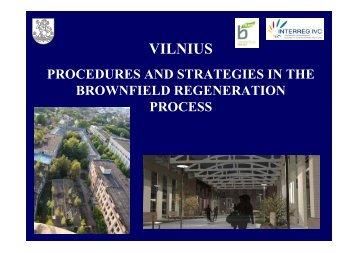 Vilnius Ruda (pdf) - B-Team Initiative