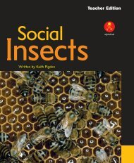 TE Social Insects pages