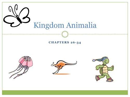 Image of: Biology Yumpu Kingdom Animalia Notes