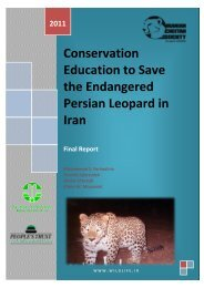 Conservation Education to Save the Endangered Persian Leopard ...