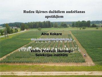Rudzu šķirnes dažādiem audzēšanas apstākļiem - Valsts Priekuļu ...