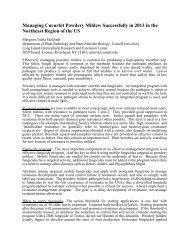Managing Cucurbit Powdery Mildew in 2013 - Vegetable MD Online ...