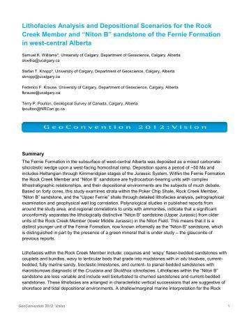 Lithofacies analysis essay