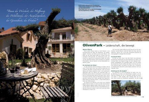 2010 Bericht aus dem Reiss-Verlag