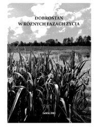 Wandycz, Oles, Jakiel_2011_Subiektywna ocena zmeczenie ...