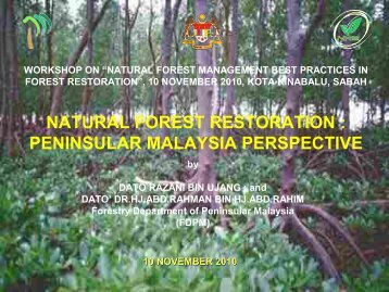 natural forest restoration : peninsular malaysia perspective