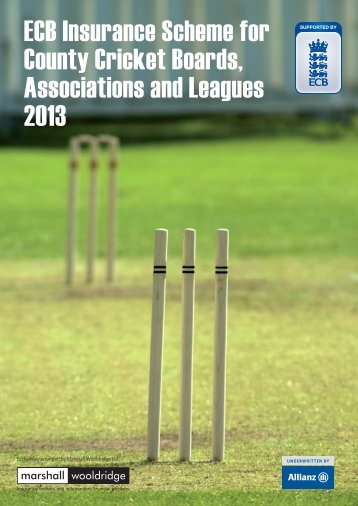 ECB Insurance Scheme for County Cricket Boards, Associations and ...