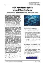 Flugblatt, Helft der Meerjungfrau_3-05 - Greenpeace-Gruppe Stuttgart