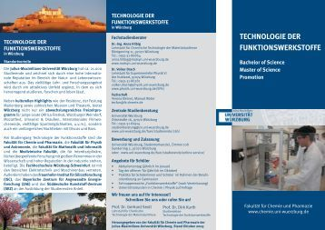 technologie der funktionswerkstoffe - Lehrstuhl für Chemische ...