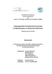 pdf-Datei - Meeresphysik - Universität Oldenburg