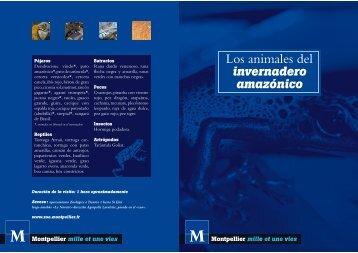 Los animales del - Zoo Montpellier