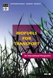 Biofuels for Transport: An International Perspective