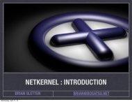 NETKERNEL : INTRODUCTION