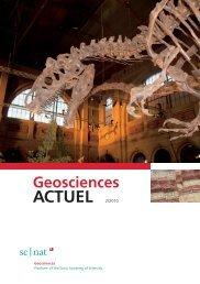 Geoscience ACTUEL 2/2010 - Platform Geosciences - SCNAT