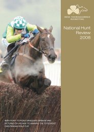 National Hunt Review 2008 - Irish Thoroughbred Marketing