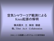 空気シャワーコア観測による Knee起源の解明