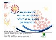 plan director para el desarrollo turistico-comercial en andalucía