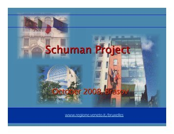 Schuman Project