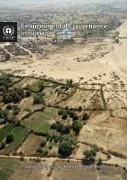 Environmental Governance in Sudan - Disasters and Conflicts - UNEP