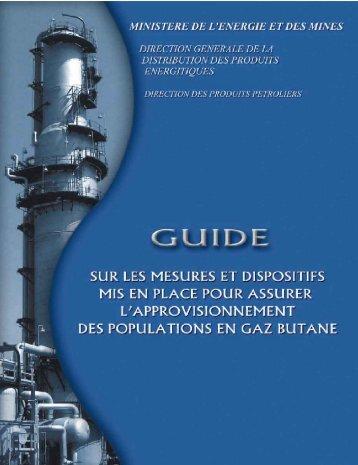 Guide sur les mesures et dispositifs établis pour l ...