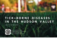 tick -borne diseases in the hudson valley - The Poughkeepsie Journal
