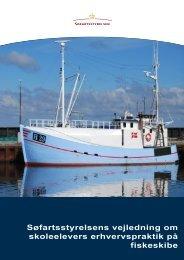 Søfartsstyrelsens vejledning om skoleelevers erhvervspraktik på ...