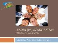 LEADER (IV.) Szakosztály 2012-13. Évi Munkaterv - Magyar ...