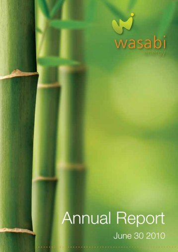 2010 Annual Report (516.70kb) - Wasabi Energy
