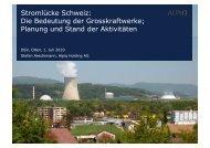Stromlücke Schweiz: Die Bedeutung der Grosskraftwerke; Planung und ...