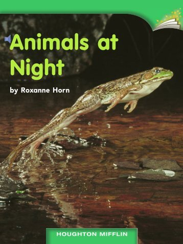 Lesson 7:Animals at Night