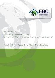 Relatório Estudos Setoriais - Núcleo de Estudos de Economias de ...