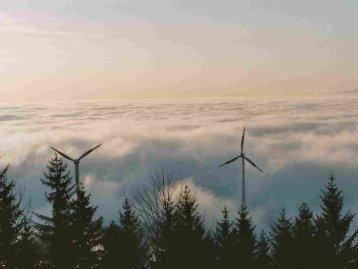 45.000 MW Wind auf See: 10.000 MW Anteil am Stromverbrauch: 25%