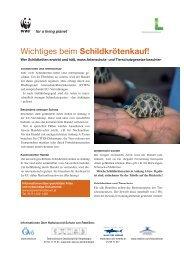 CITES Factsheets schildkröten