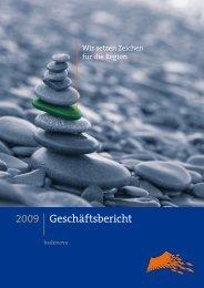 Geschäfts- und Finanzbericht 2009