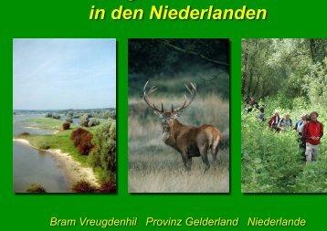 Konzept und Umsetzung eines Ökologischen Netzwerkes in den ...