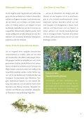 Wachsende Freude - Seite 7