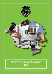 opções do plano e orçamento 2013 - Câmara Municipal de Castro ...
