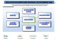 télécharger le bulletin documentaire régional de Novembre 2009