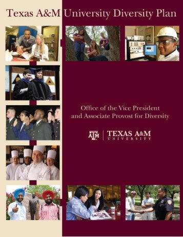 Texas A&M University Diversity Plan - Office of the Vice President ...
