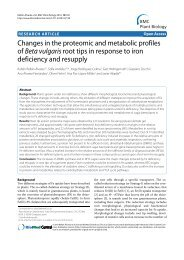 Changes in the proteomic and metabolic profiles of Beta vulgaris ...