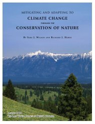 Fix Climate by Conserving Nature, 1.5 MB PDF download