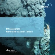 Massivsulfide – Rohstoffe aus der Tiefsee